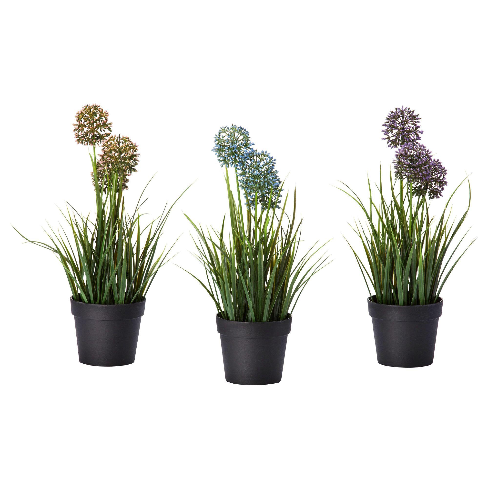 FEJKA Artificial potted plant - IKEA | Natural living room ...