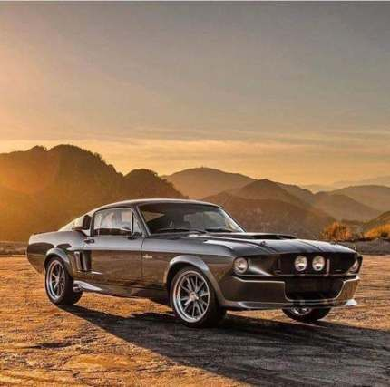 New Dream Cars Muscle Shelby Mustang Ideas