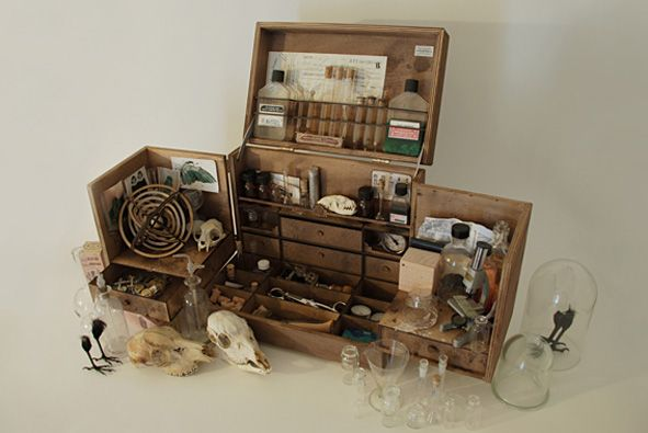pin by lorraine chia on booth display ideas cabinet of curiosities projects campaign furniture