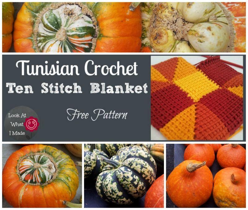 Free Pattern:  Tunisian Crochet version of Frankie Brown's Ten Stitch Blanket.  Colourway:  Fabulous Fall!