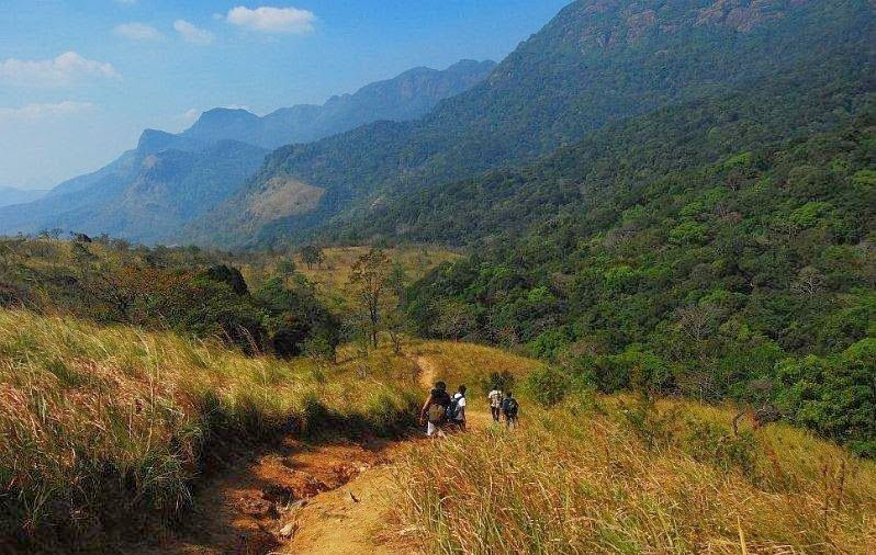 Agasthyakoodam Trekking Kerala Tourism Tourism Trekking