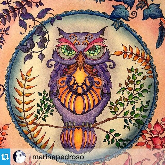 Detox Do Mundo Virtual On Instagram Repost Marinapedroso Enchanted Forest Coloring Enchanted Forest Coloring Book Johanna Basford Enchanted Forest