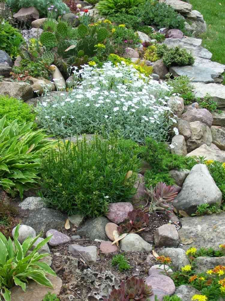 Romantischer Steingarten mit Kakteen  Steingarten