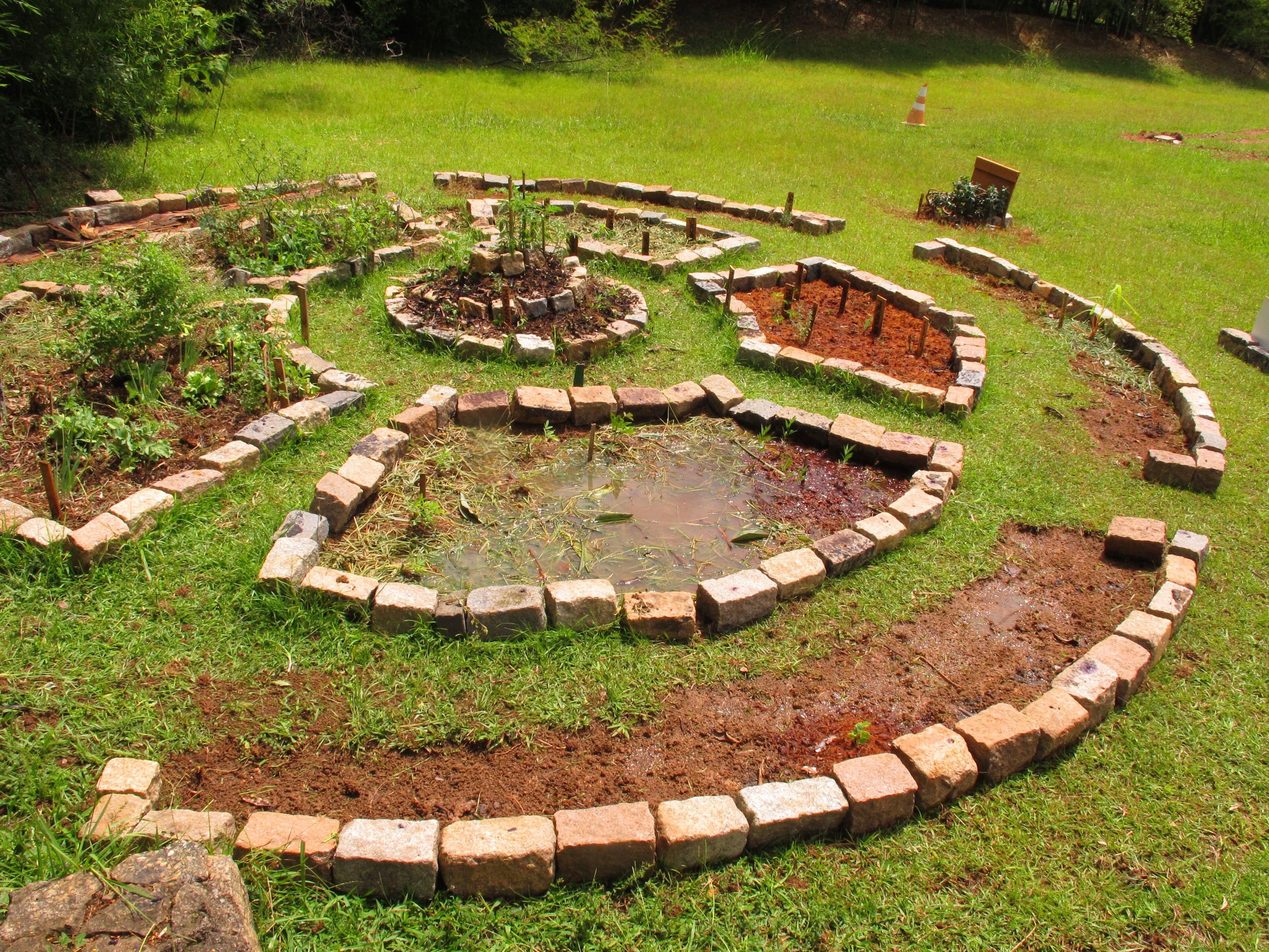 jardim mandala herb gardens pinterest