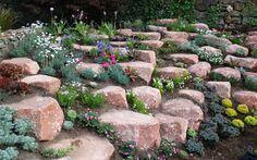 Lovely Creating A Rock Garden