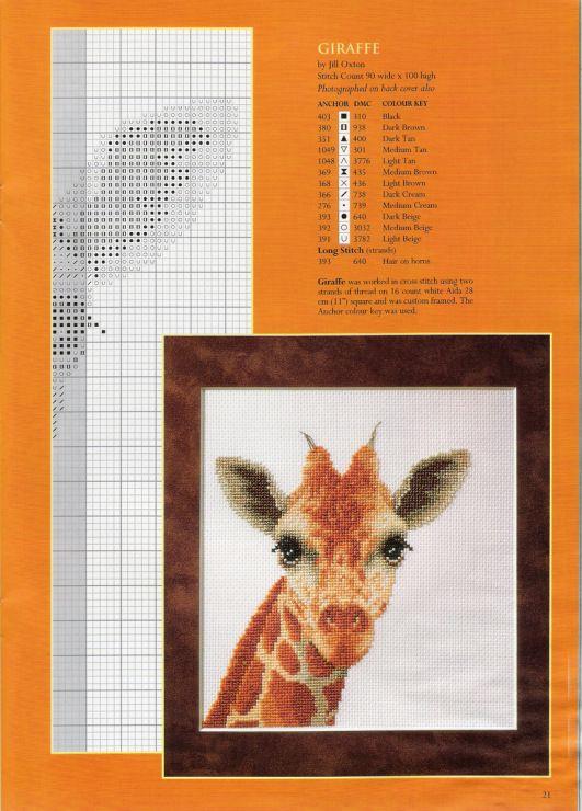 Free giraffe cross stitch pattern pg 2 #stitching #animals
