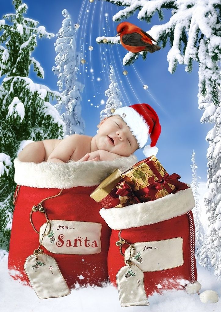 CH4 Christmas Digital Backgrounds Backdrops templates