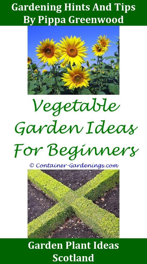 Home How,Gargen succulent fairy garden ideas bali garden paving ...