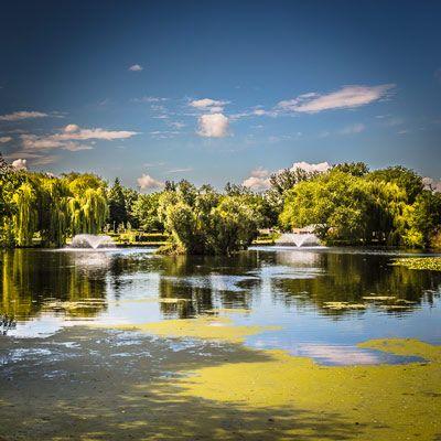 Central Park Lake, Chelmsford, Essex