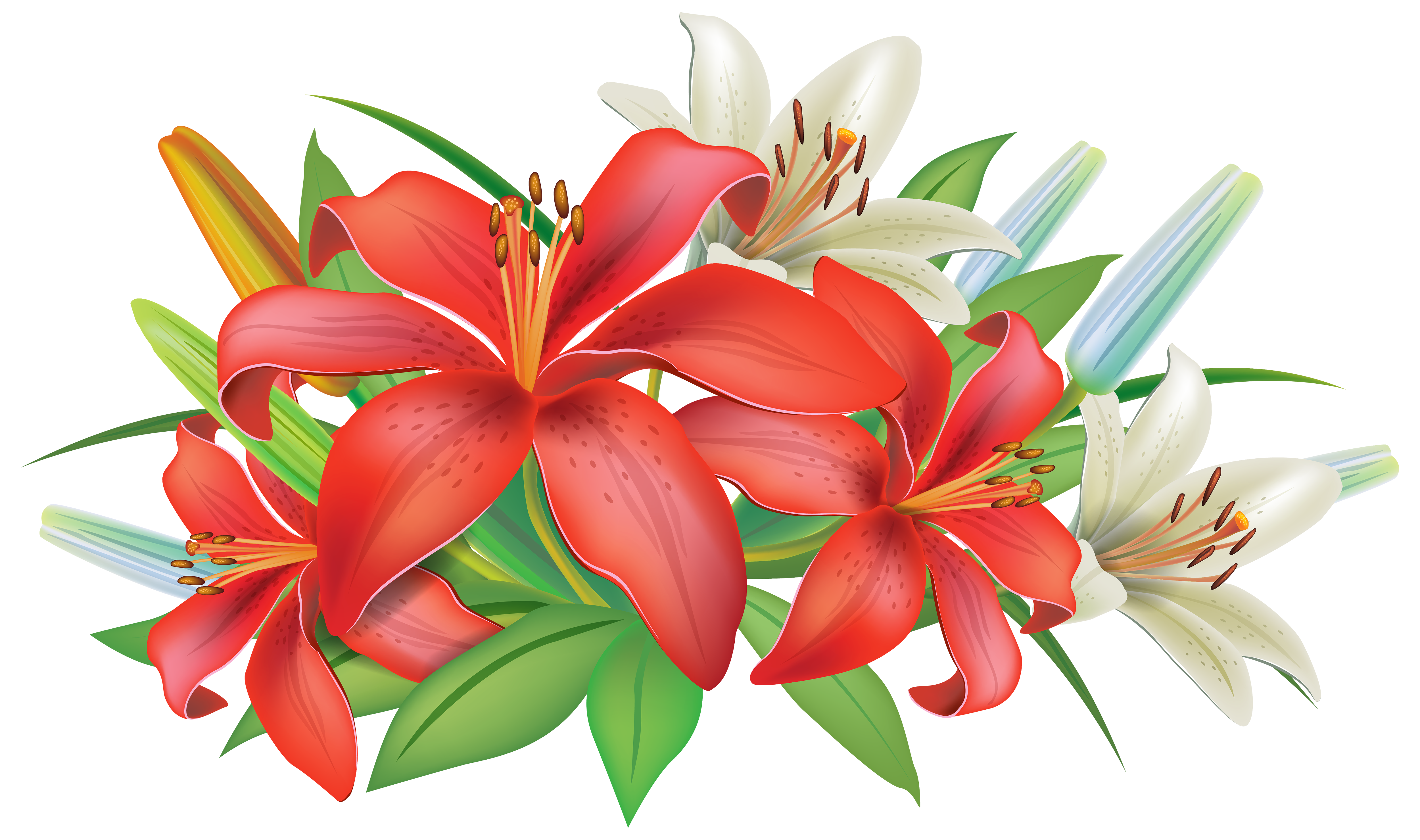 Red Lilies Flowers Decoration PNG Clipart Image Flower