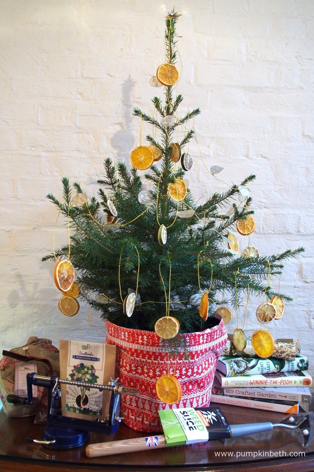 Live, Growing, Potted Christmas Trees From Wheeler Street Nurseries in Witley | Potted christmas ...