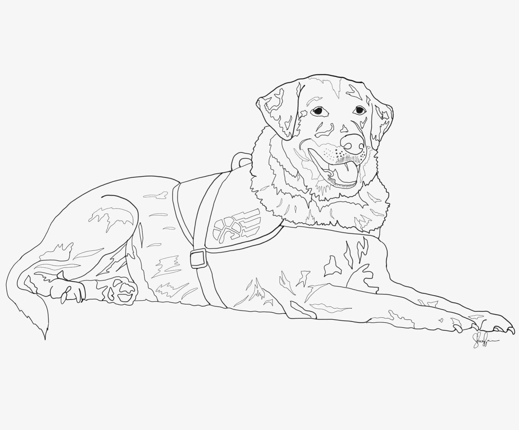 Custom service dog drawing email designsbystaceylynn