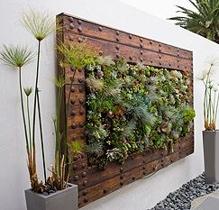 Image Result For Wall Mounted Circular Planters