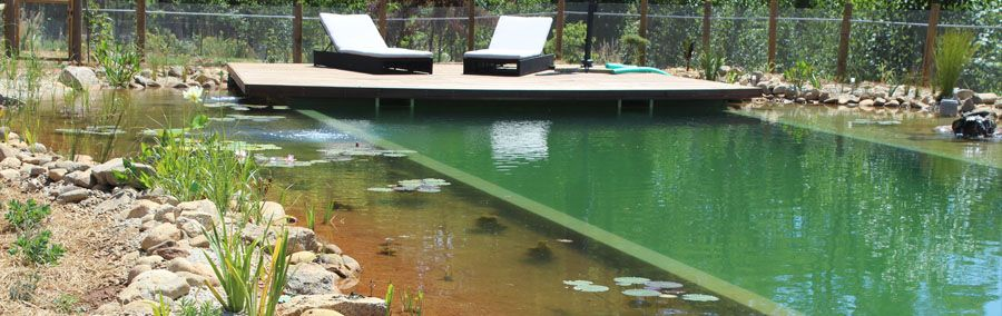 Natural swim ponds australia swimming pool pinterest natural swimming pools pond and for Natural swimming pool australia