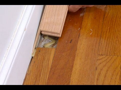 How To Repair A Tongue And Groove Wood Floor This Old House Flooring Home Repairs Old Wood Floors