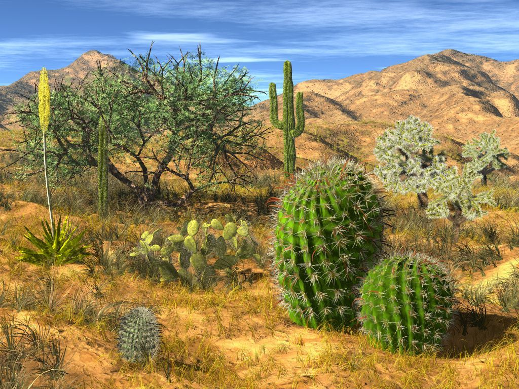 arizona photos Recent Lightwave renderings using several