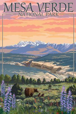Mesa Verde National Park Colorado Bear Family Flowers Lantern Press Poster