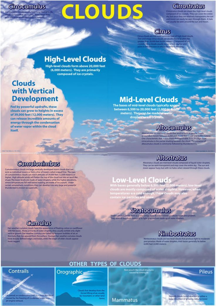 Types Of Clouds Weather Science Earth And Space Science Science Facts