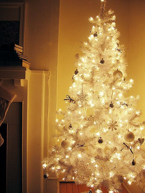 White Christmas Tree...cute for the bedroom! Not the main tree though.