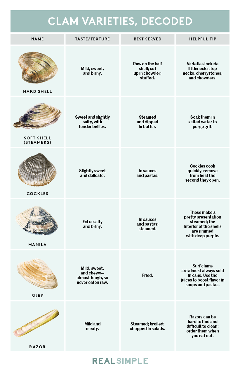 Here\'s Every Type of Clam in One Simple Chart | Mmm... Food ...