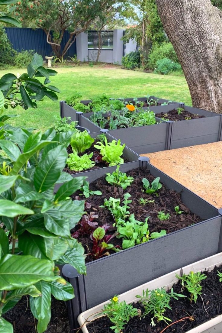 Fall Gardening And The Ideal Planters For The Season With Images