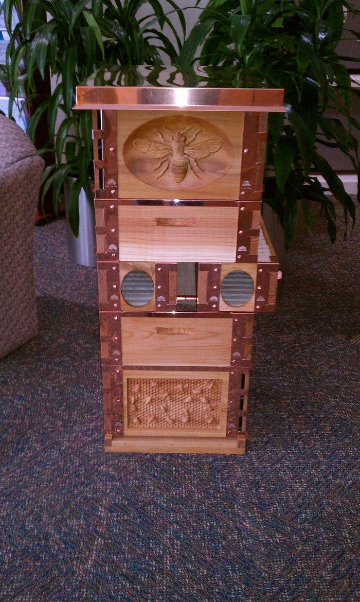 eco bee box observation hive with removable comb box kickstarter