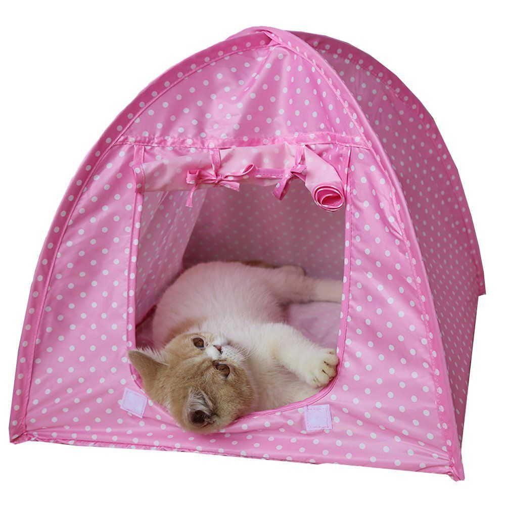 cat Tent Foldable Cat Kitty Tent for Small Size Dogs and Cats u003eu003e Additional details  sc 1 st  Pinterest & cat Tent Foldable Cat Kitty Tent for Small Size Dogs and Cats ...