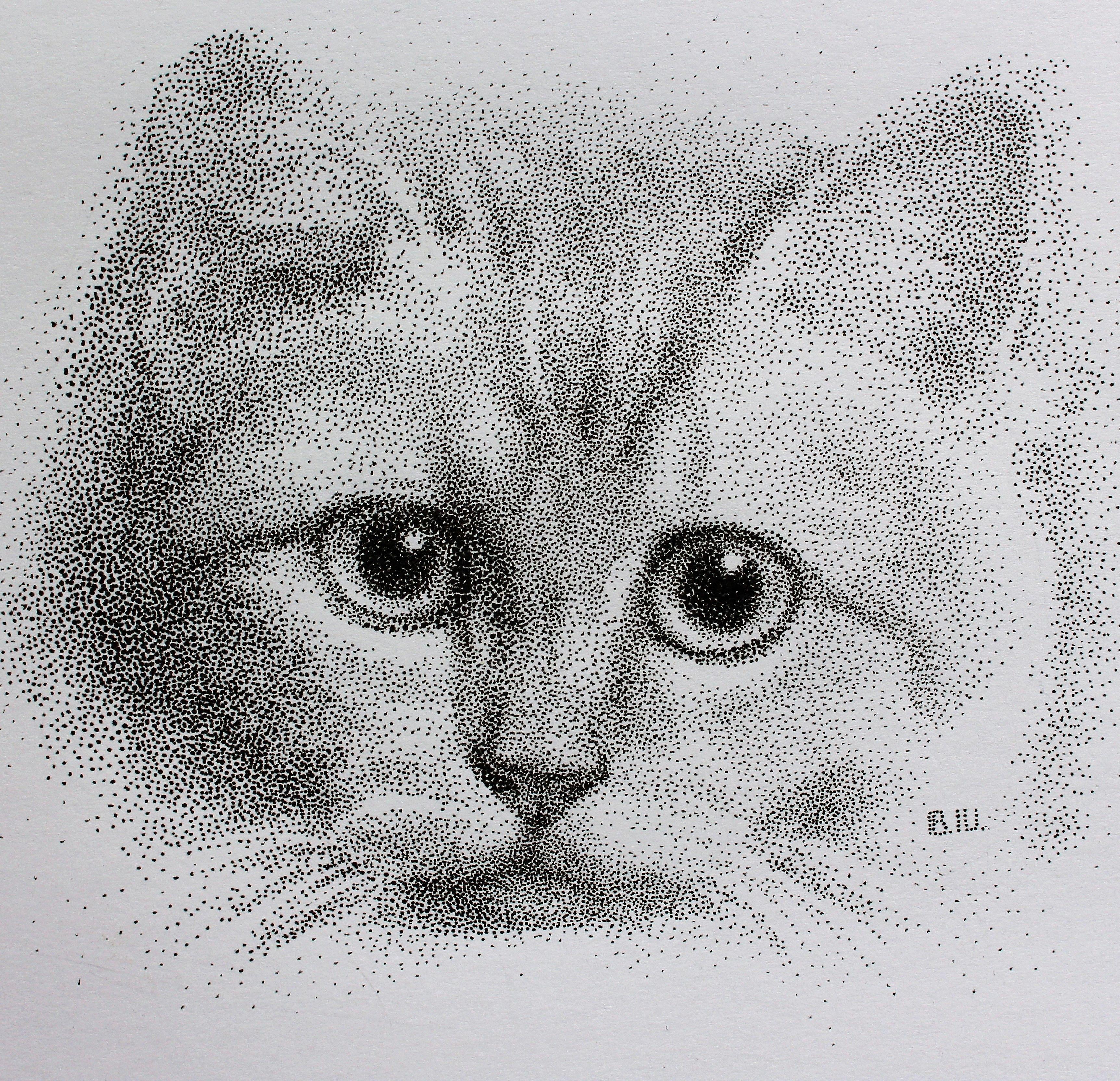 Pointillism Dotted Style Ink Pen Cat Portrait