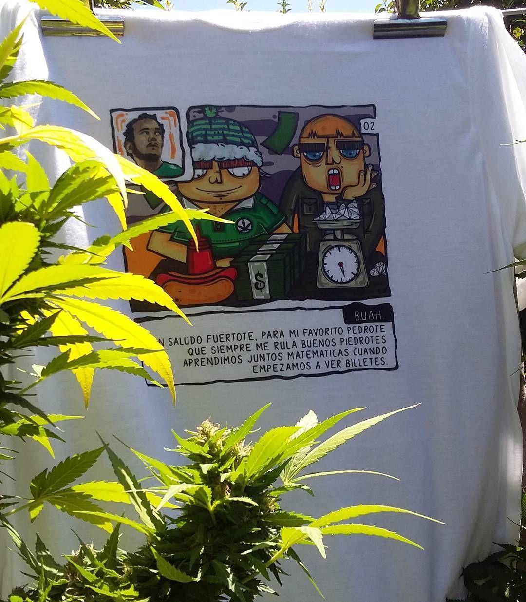#7notas7colores #pedrote #rapespañol @creambarbershop  #buah #weed #420 #marihuana #rap #hiphop #rap #tshirt #sativa #ilustradorchileno #ilustración #illustration #ilustracion #draw #drawing #drawings #art #artist #hotdog #colorist #painting #paint #artoftheday #conceptart #dinero #cash #cashmeoutsidehowboutdat