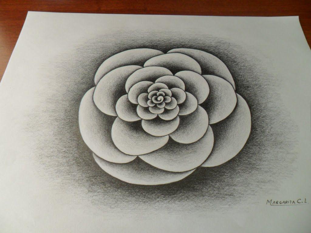 Dibujo De Un Mandala Usando El Degradado Del Lapiz Con 6b Sin Difuminador Estudio Tonos Y Volumen Dibujo De Flor Lapiz Dibujos