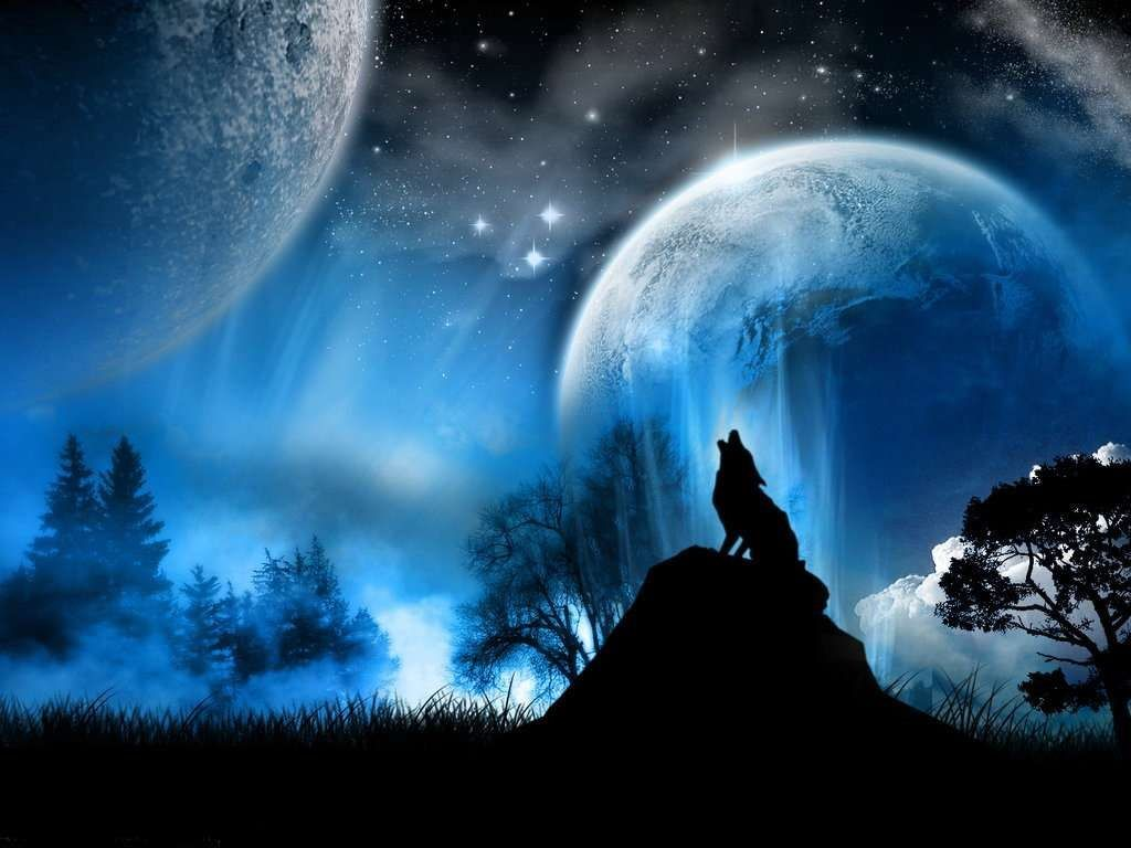Resultado de imagen para lobos aullando a la luna