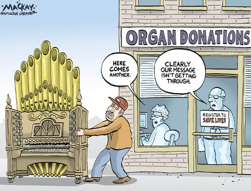 Image result for organ donation cartoon