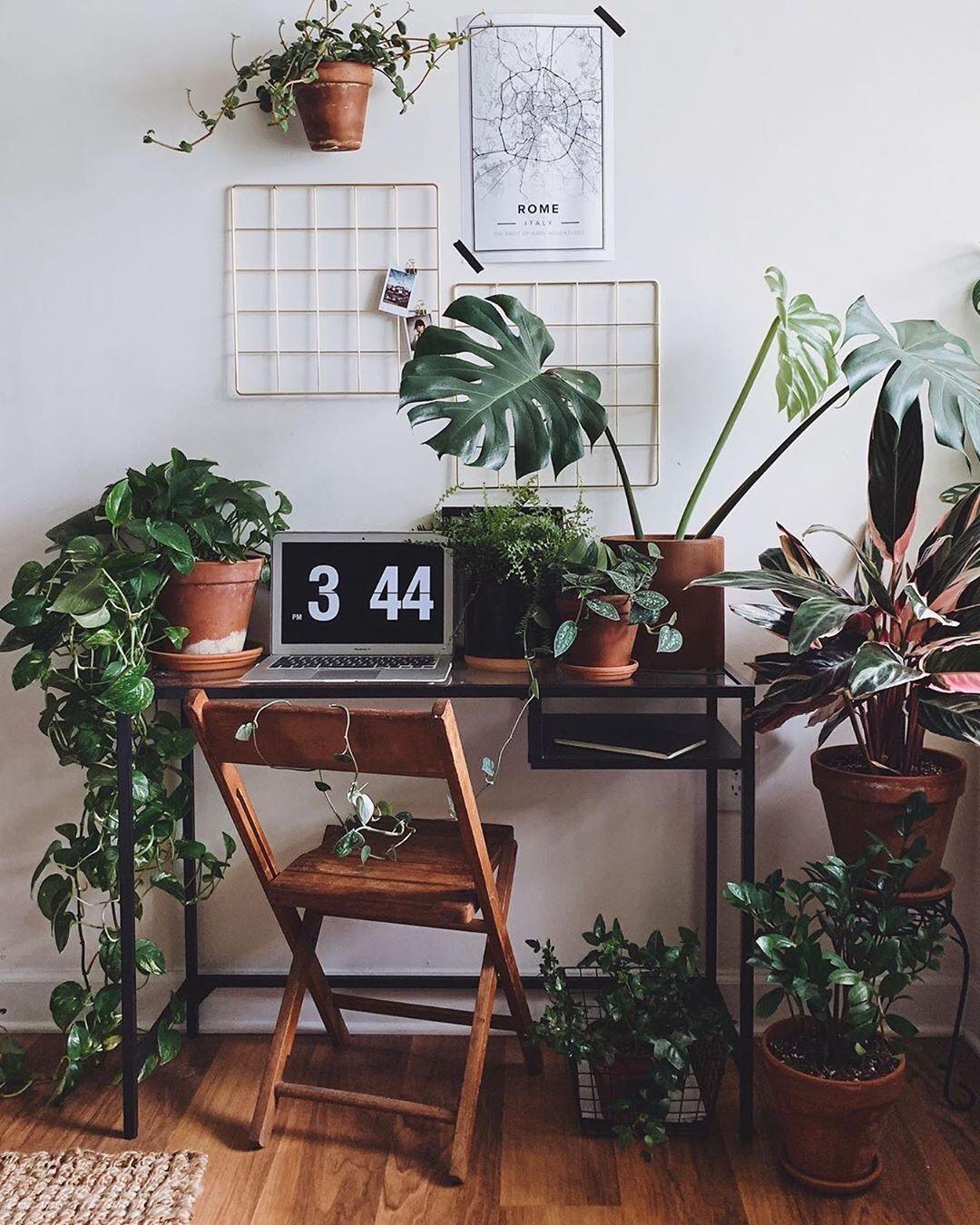 Office Inspo Junglein Budget Home Decorating Home Decor Elegant Home Decor