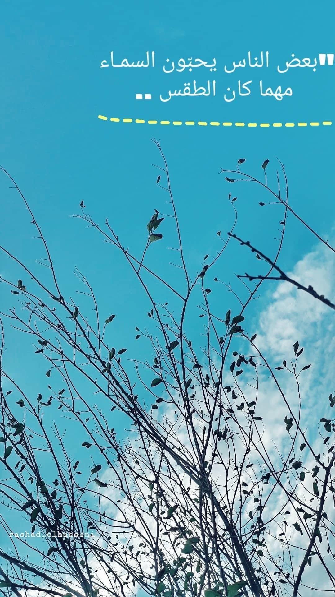 السباحة انقاذ رياضة حمامات سباحة مسبح الصيف البحر نشاط السباحة البحري مسابح سياحة صور العاب م Instagram Photo Instagram Photo