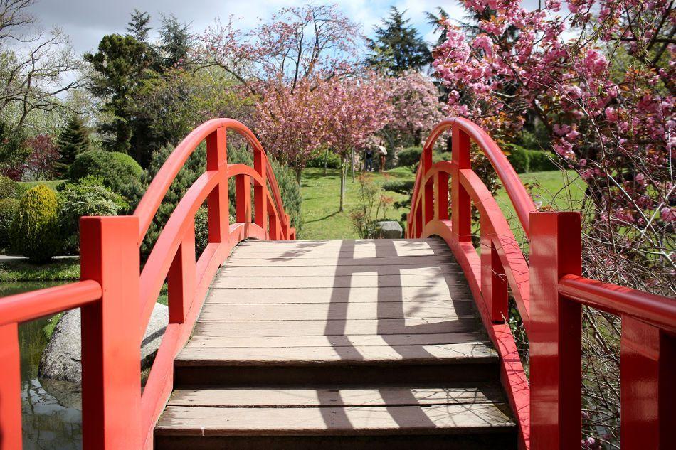 Jardin Japonais A Toulouse Voyage Au Pays Du Soleil Levant