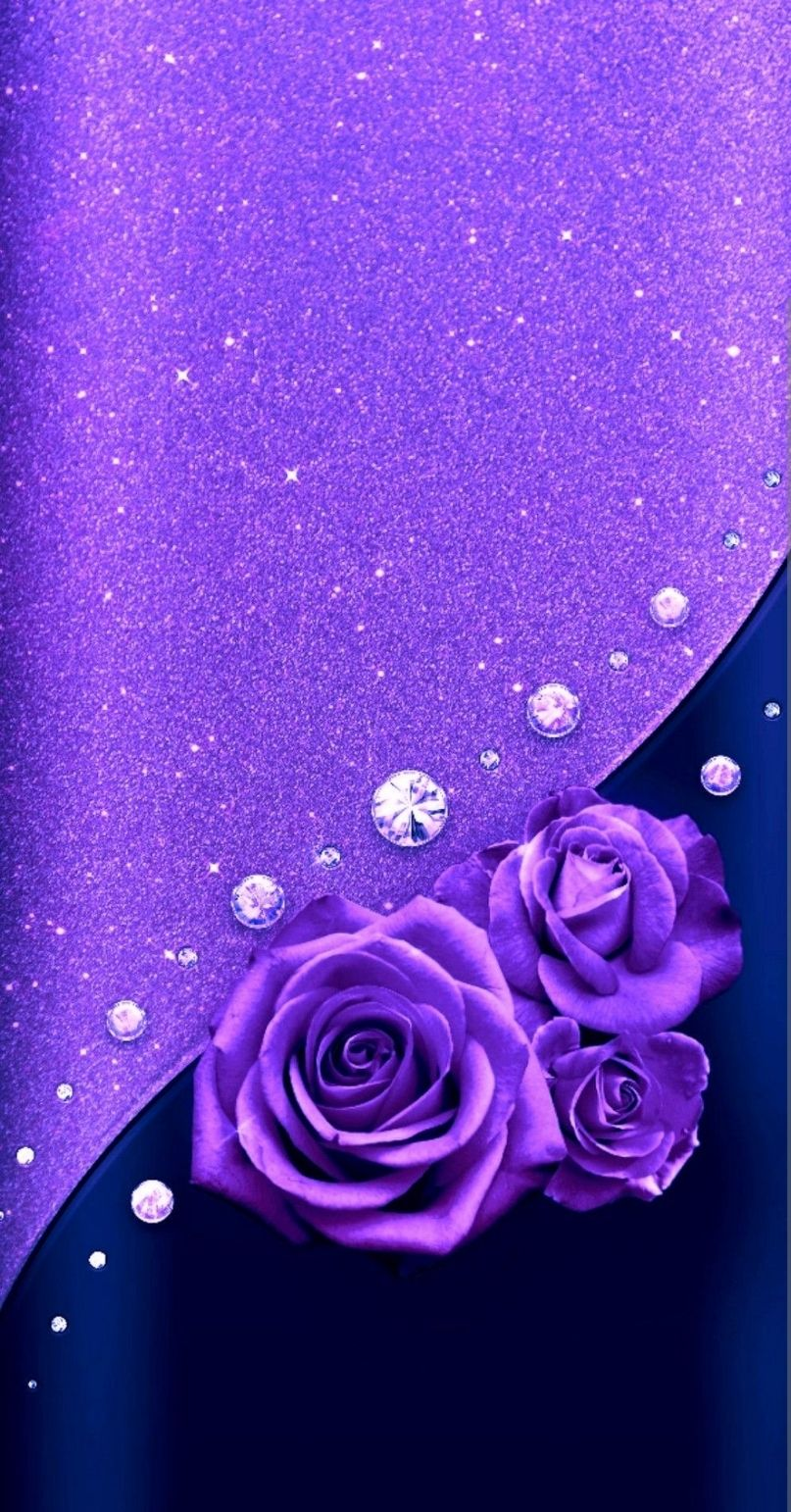 Purple Roses Wallpaper