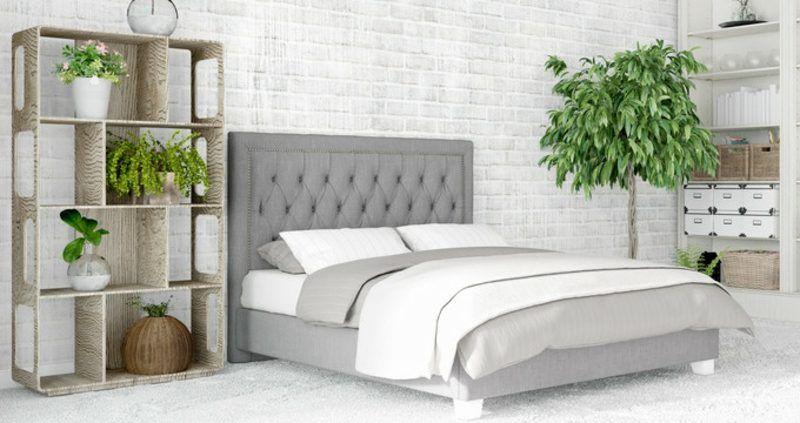 Sind Grune Pflanzen Im Schlafzimmer Schadlich Oder Nicht