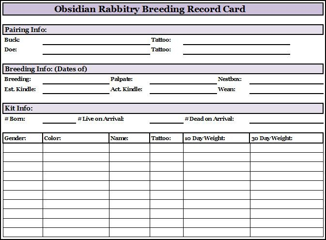 Rabbit Cage Cards Rabbit S From Someone Who Can Provide You With A Pedigree Certificate Rabbit Breeds Rabbit Cages Rabbit Hutches