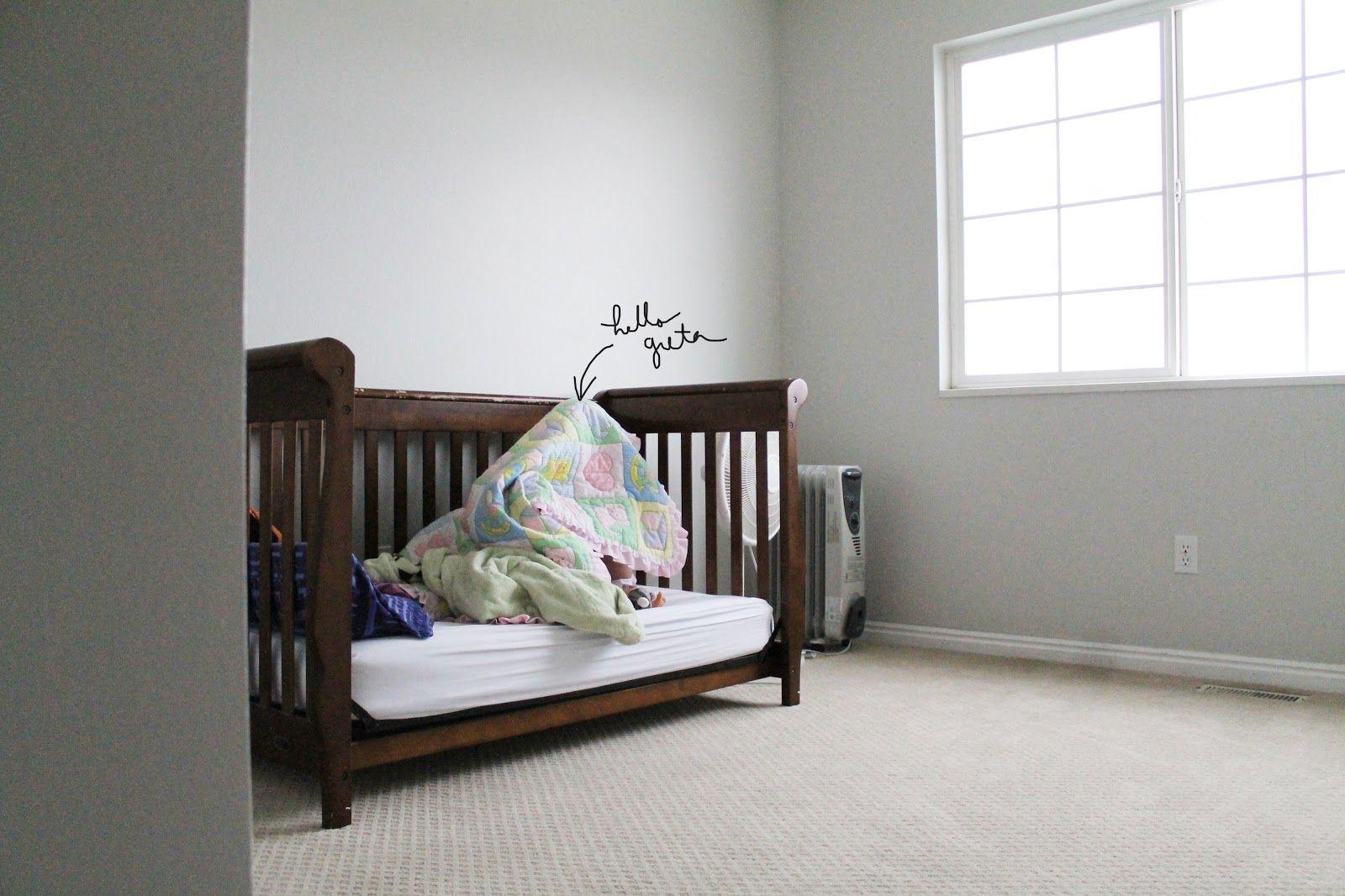 Best Gray Owl Benjamin Moore Bathroom Pinterest Colors 400 x 300