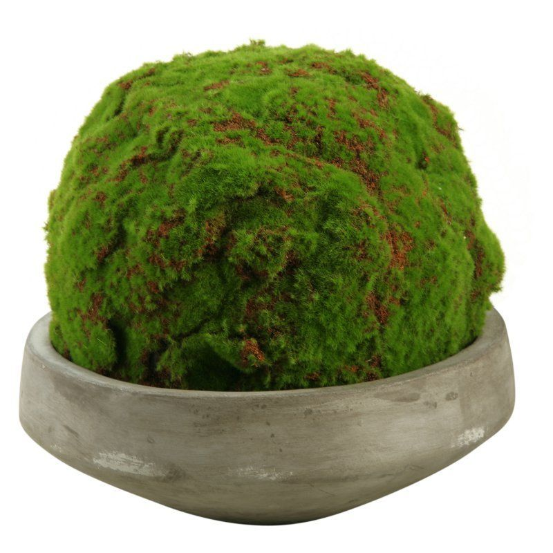 D and W Silks Large Moss Ball in Concrete Bowl - 168060