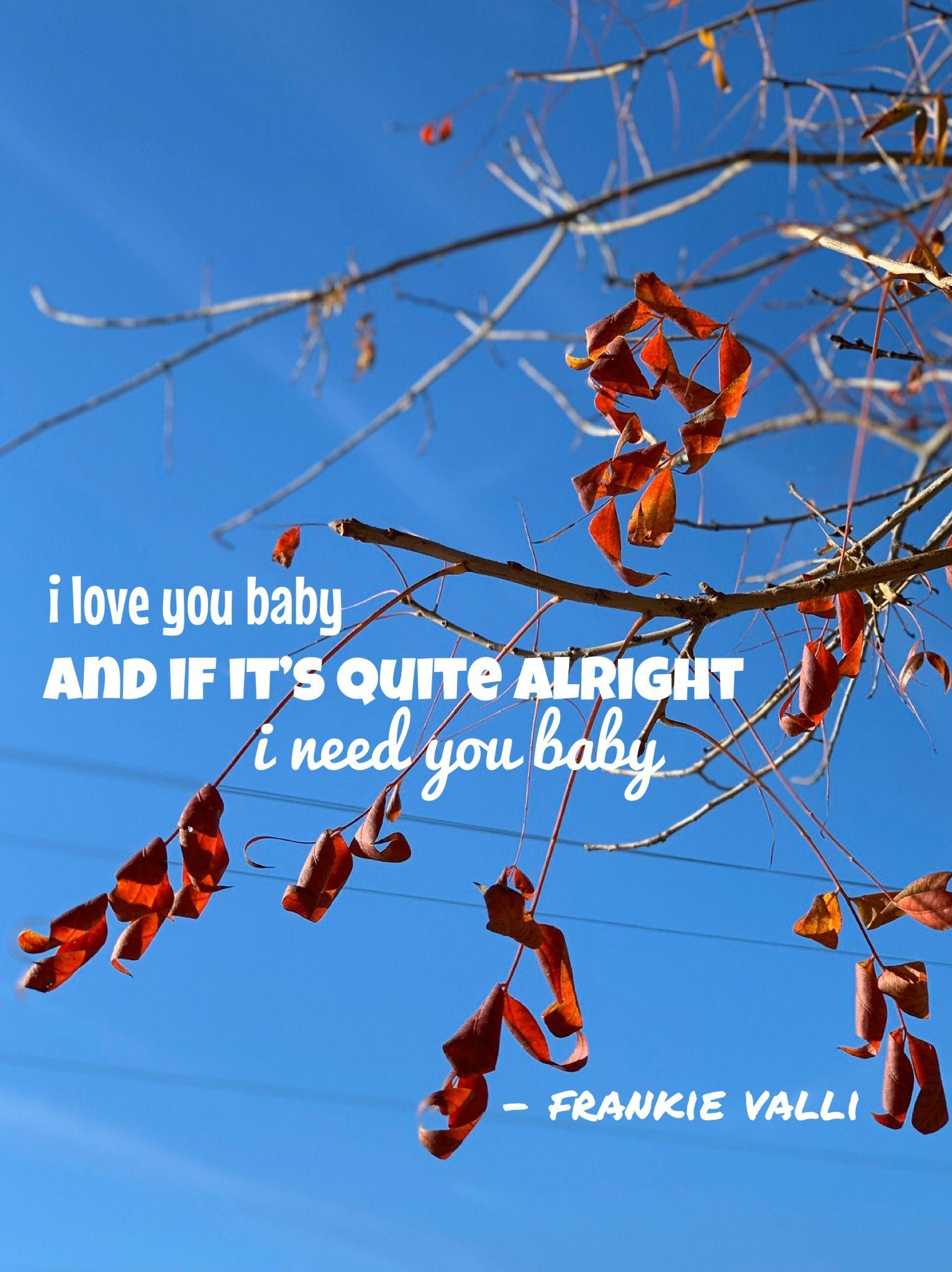 "Frankie Valli I Love You Baby : frankie, valli, Can't, You"", Frankie, Valli, Baby,, Valli,, Alright"