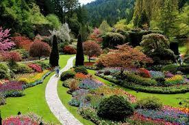 Resultado de imagem para jardins