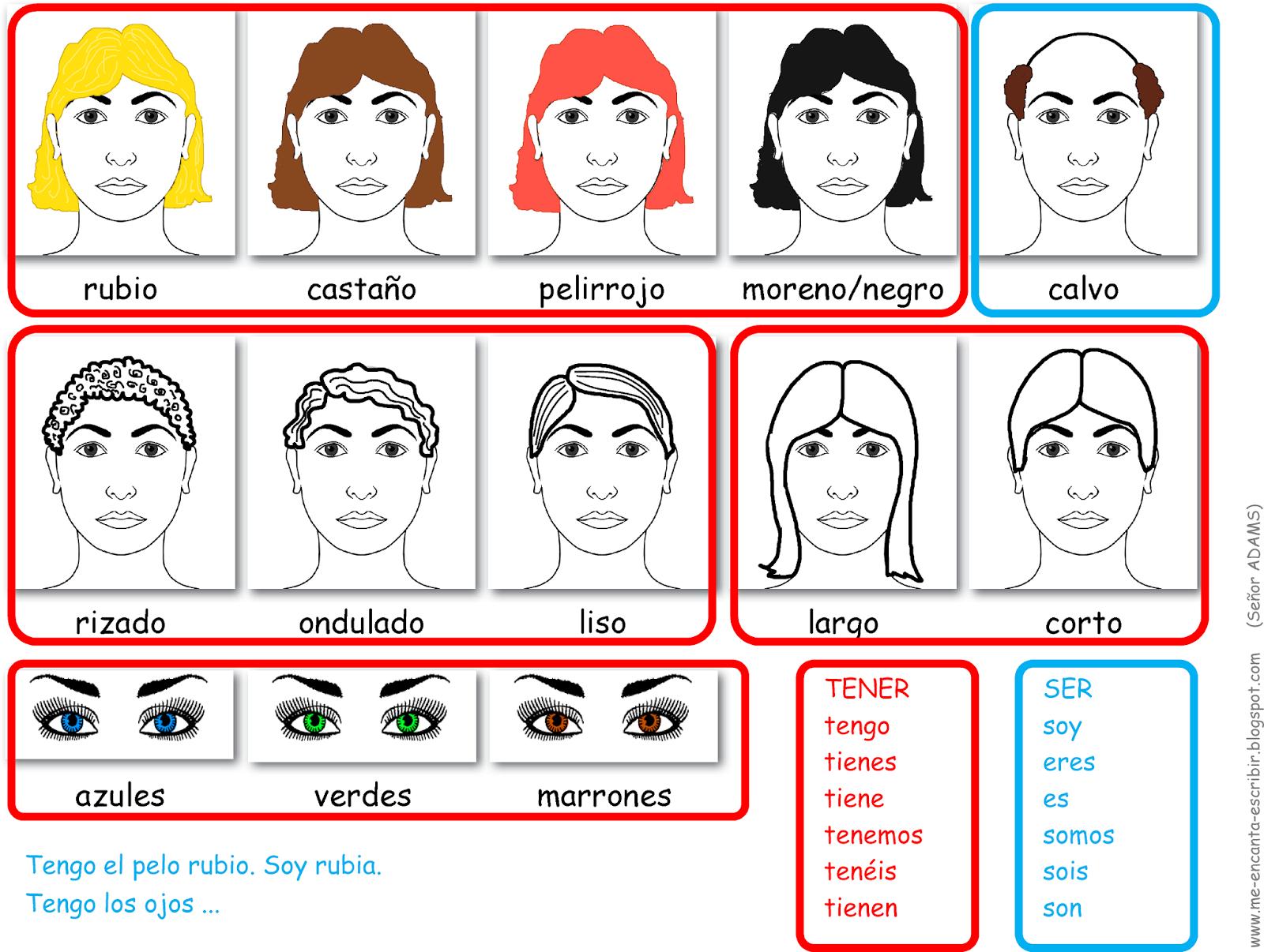 Como Tienes El Pelo De Que Color Son Tus Ojos