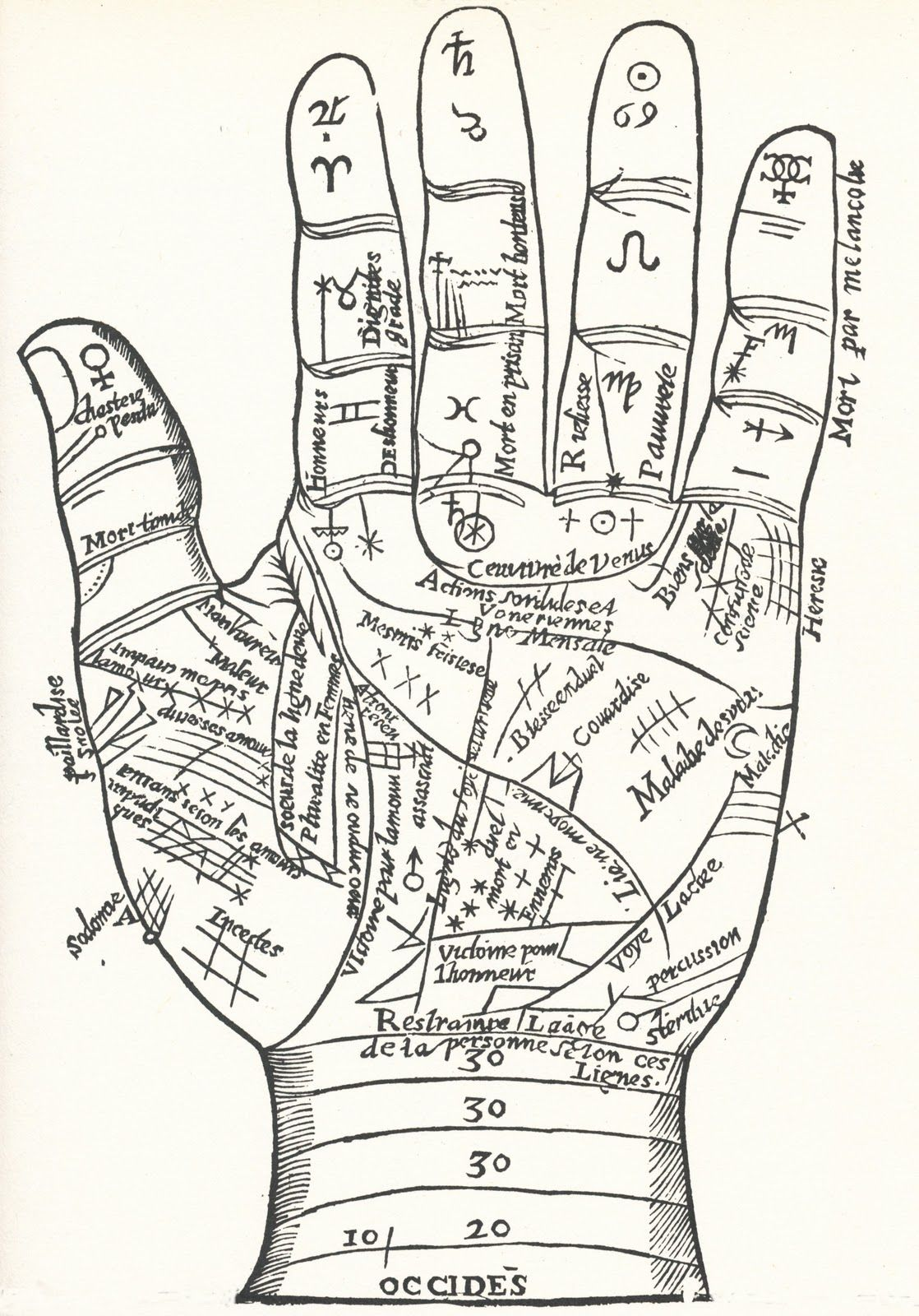 Collage Candy Vintage And Ancient Hand Diagrams Drawing Prints Palm Reading A History Of Magic
