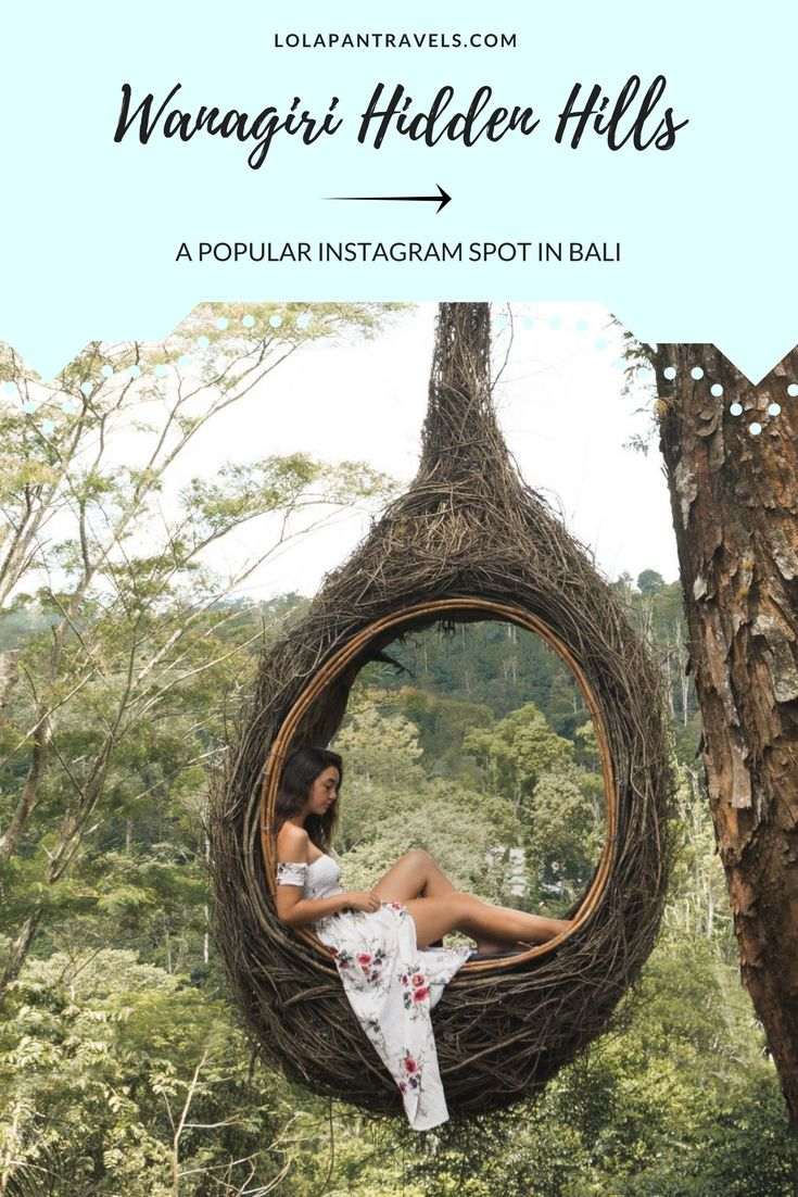 Wanagiri Hidden Hills is located to the north of Bali and is becoming a popular tourist attraction for people looking to get a photo at one of the many unique bamboo structures. The most popular attraction at the Wanagiri Hidden Hills is the giant birds nest, as well as the swings and lookouts overlooking the lake.  #wanagirihiddenhills #bali #baliguide #balitravelguide #travelguide #baliinstagramspots