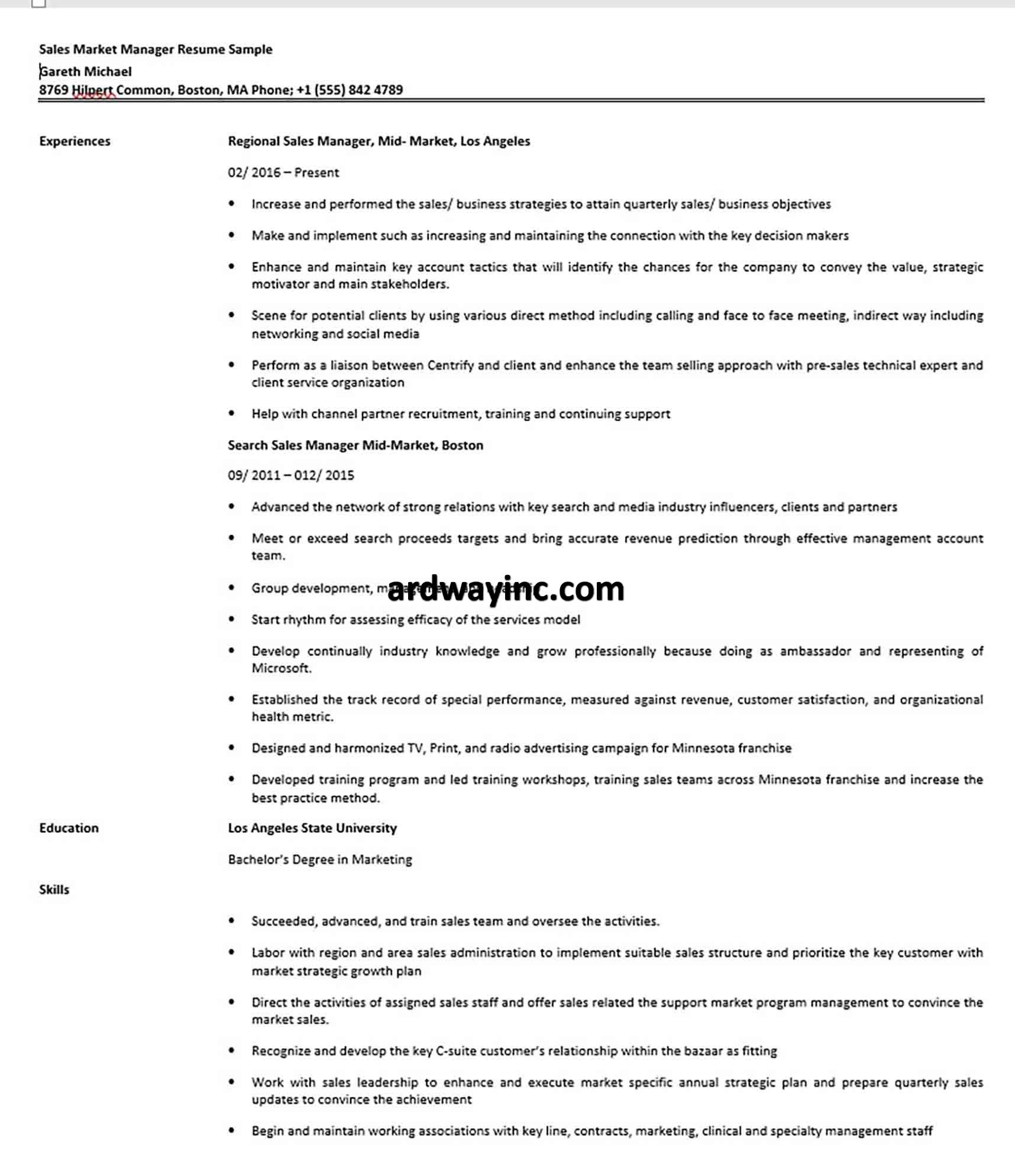 Sales Market Manager Resume Sample in 2020 Public