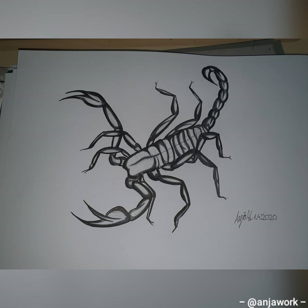 🦂🦂🦂 . . . #art #artwork #drawing  #tattooinspiration #tattooart #artist #drawing #grunge #sickart #follow #meinungen #artistoninstagram #tattooinspiration #tatt #quotes #artquotes #instagood #instadaily #instagram  #tattoodesign #instagood #instadaily #inkdrawing #ink  #follow #like  #quotes #skorpion #skorpiontattoo #isell #sellart #buissnes #tiktokartist #tiktokart #stayhome #wirbleibenzuhause