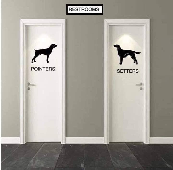 Bathroom humor by Deborah Bates on Funnies | Home office ...