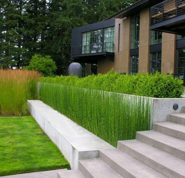 Lösning med höjdskillnad mot entren. Fast med roligare växter #contemporarygardendesign