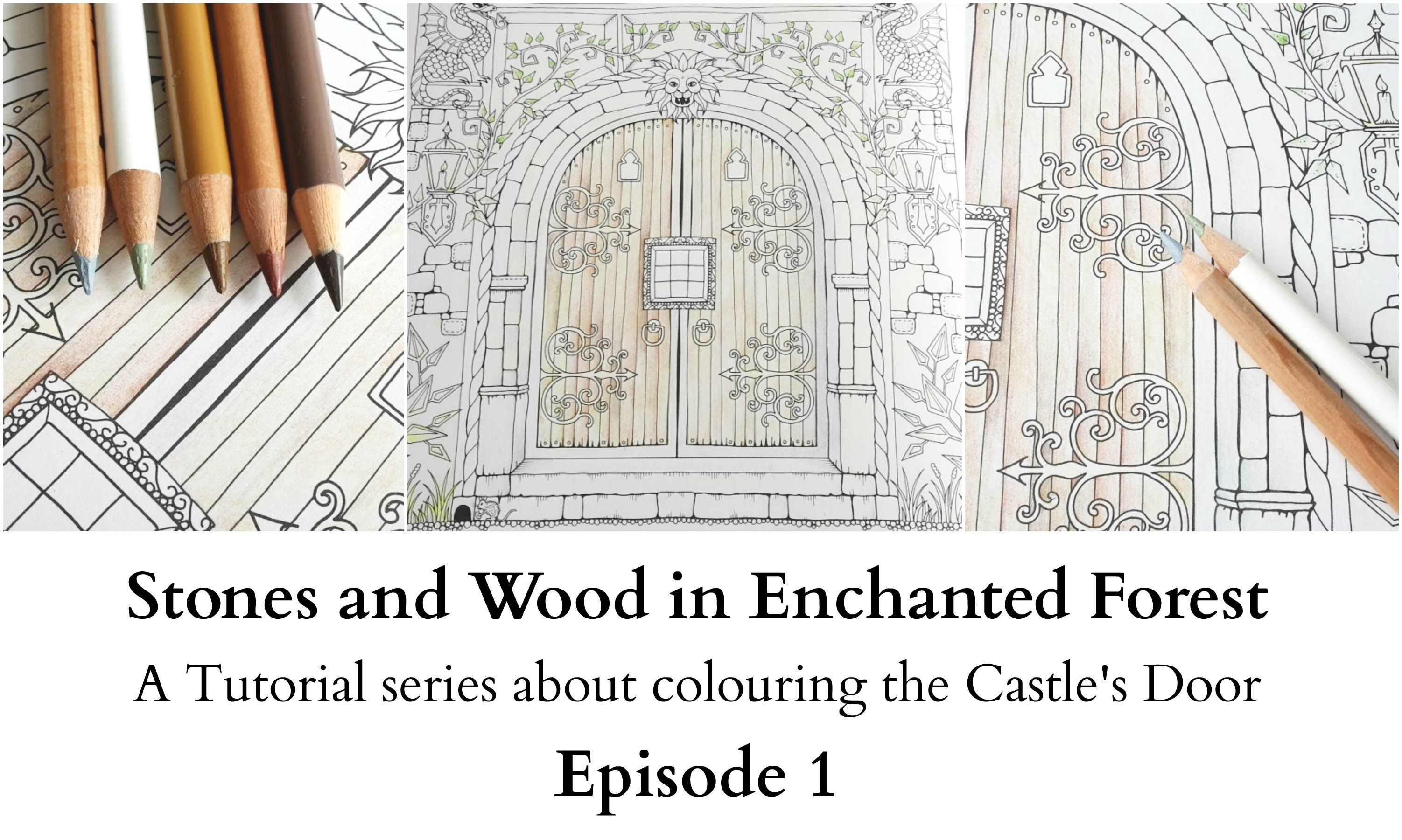 Stones and Wood in Enchanted Forest - Episode 1